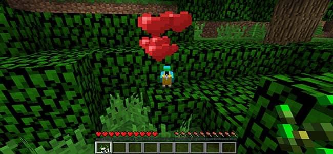 Taming Minecraft Parrot