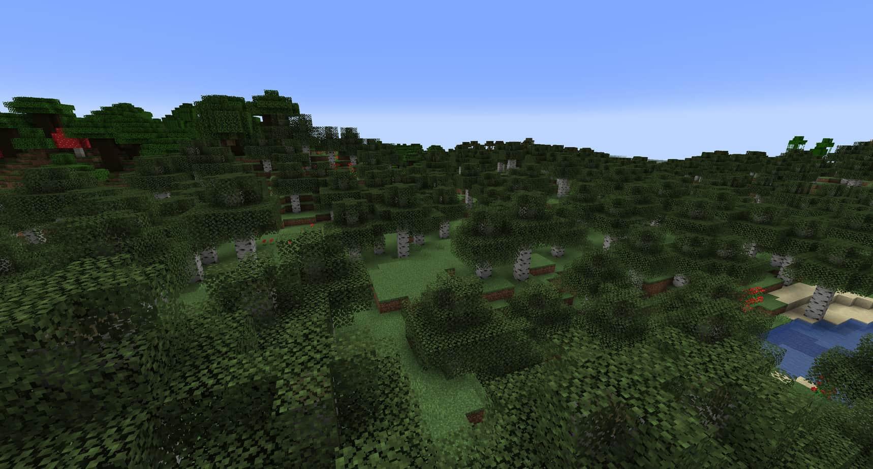 Minecraft Biomes Forest