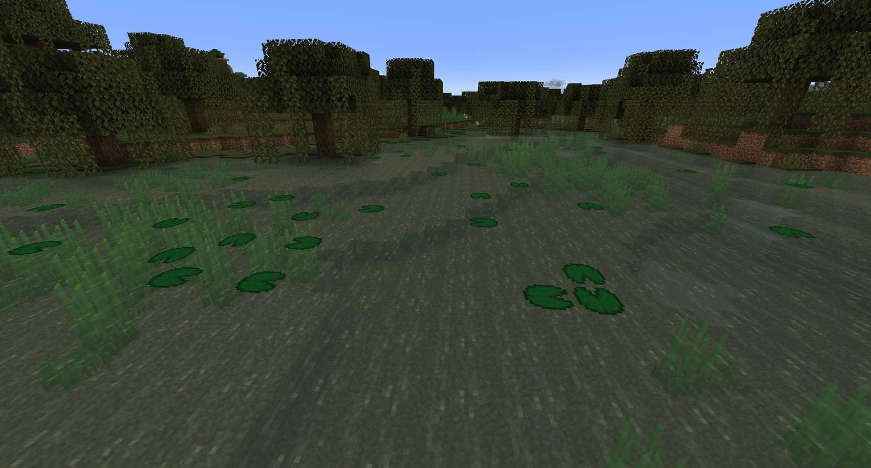 Minecraft Swamp